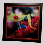 Modified Fine Art Photography Framing